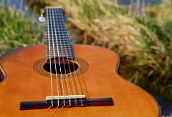 guitareportail
